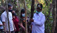 Permalink to Wabup Sintang Puji Petani Milenial Budidaya Tanaman Kakao
