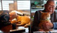 Permalink to Mengharukan, Kakek Pemarah ini berubah Drastis karena Kucing Lucu ini